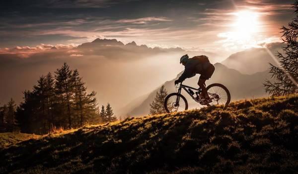 Golden Hour Biking Poster