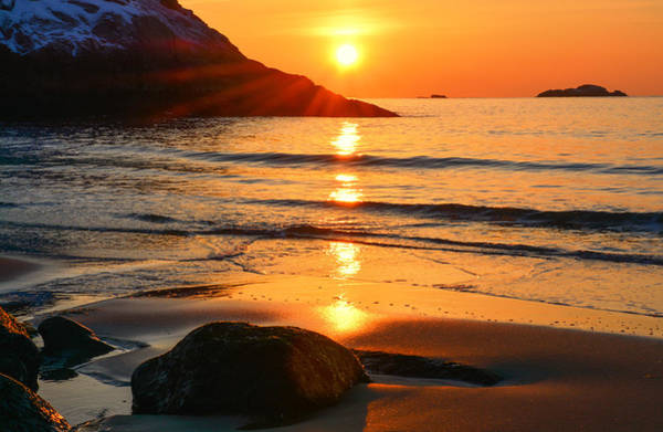 Poster featuring the photograph Golden Morning Singing Beach by Michael Hubley
