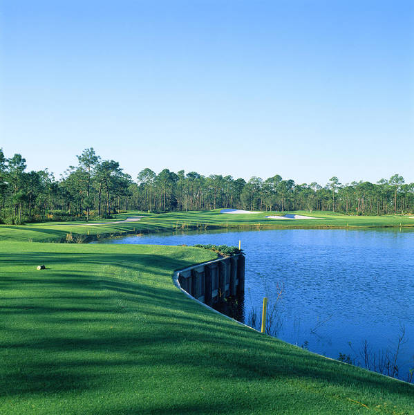 Golf Course At The Lakeside, Regatta Poster