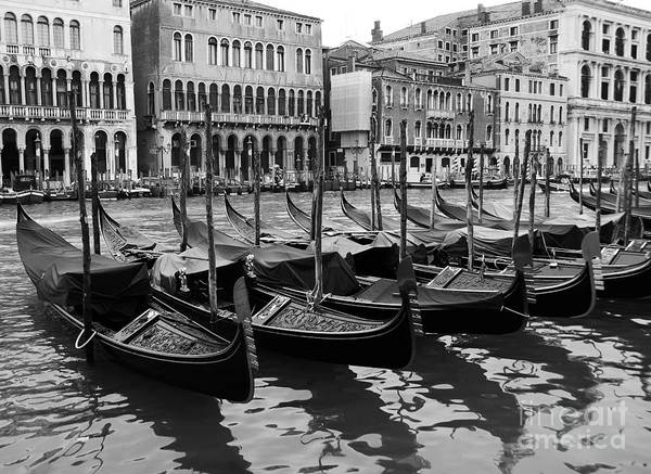 Poster featuring the photograph Gondolas In Black by Mel Steinhauer
