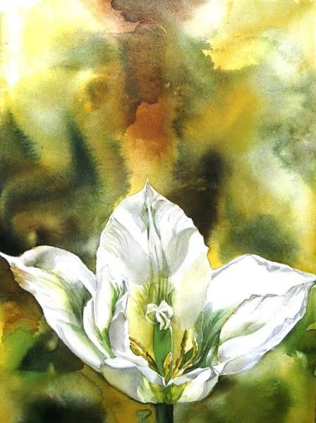 Grasshopper Tulip Poster