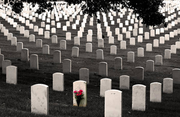 Graves At Arlington National Cemetery Poster
