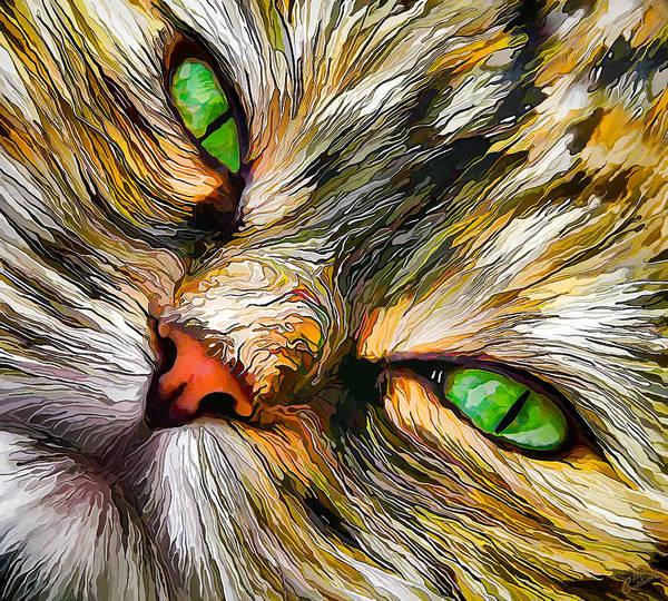 Green-eyed Tortie Poster