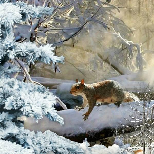 Harry In Winter Poster