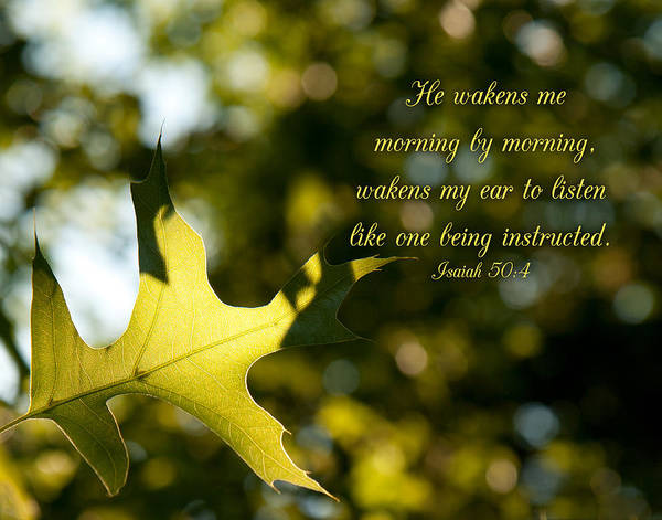 He Wakens Me Morning By Morning Poster