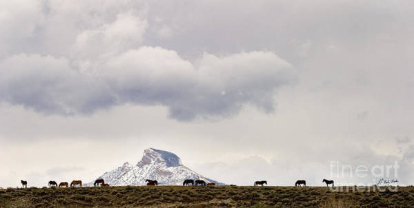Heart Mountain Horses Poster