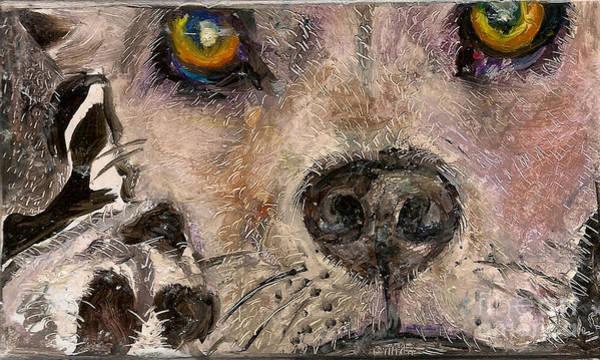 Hello Dog Poster