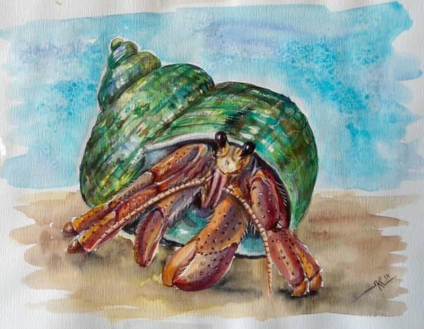 Hermit Crab 4 Poster