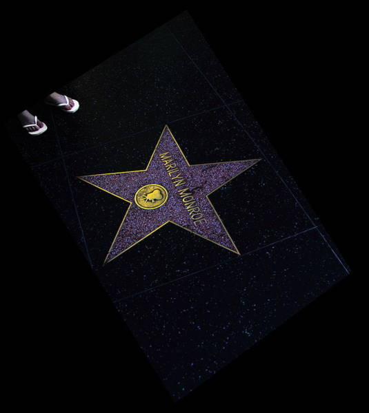 Hollywood Star Poster