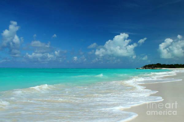 Iguana Island Caribbean Poster