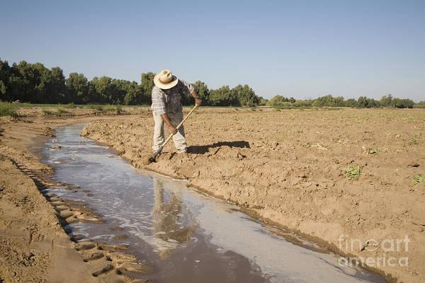 Irrigation In Arizona Desert Poster