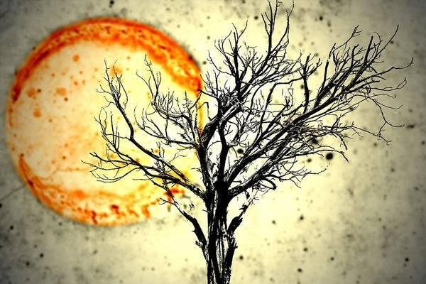 Lava Sky Poster