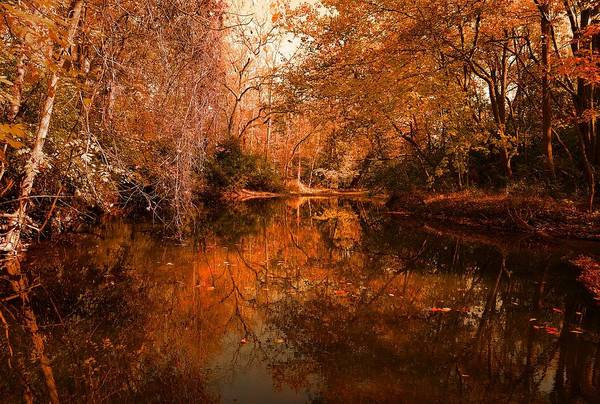 Lazy River Autumn Poster