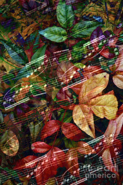 Poster featuring the digital art Leaf Motif by Lon Chaffin