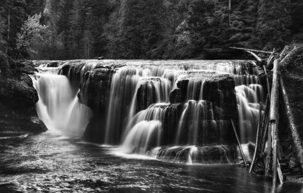 Lewis River Lower Falls Black And White Poster