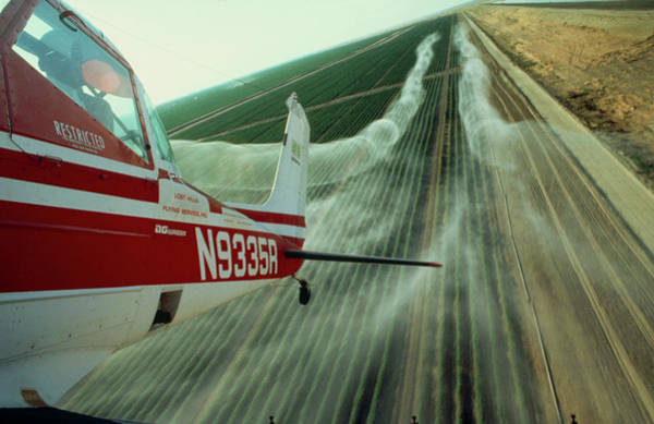 Light Aircraft Spraying Cotton Poster