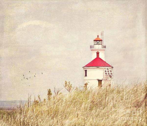 Lighthouse With Red Roof Poster