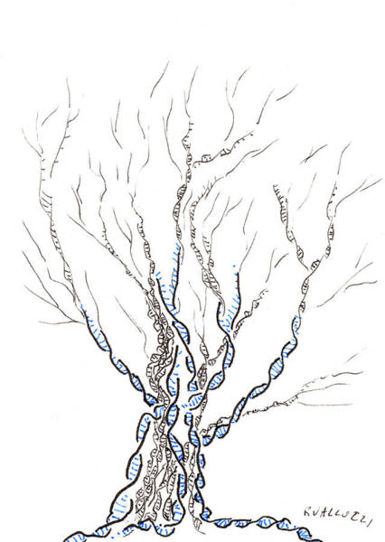 Little Dna Tree Poster