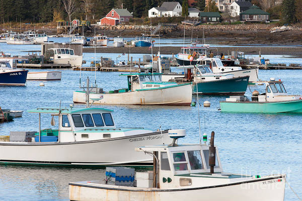 Lobster Boats In Bass Harbor I Poster