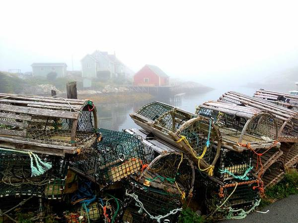 Lobster Traps And Fog Poster