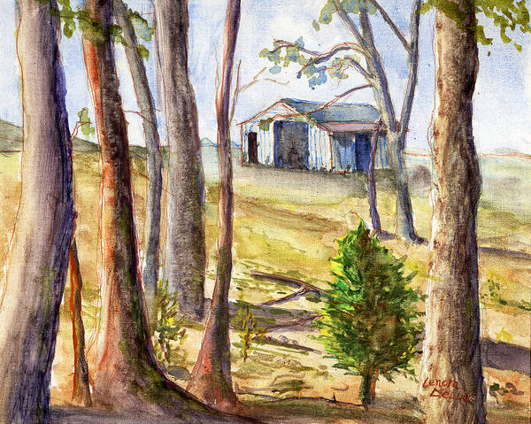 Louisiana Barn Through The Trees Poster