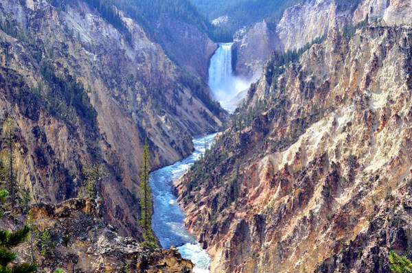 Lower Yellowstone Falls Poster