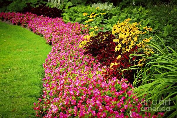 Lush Summer Garden Poster