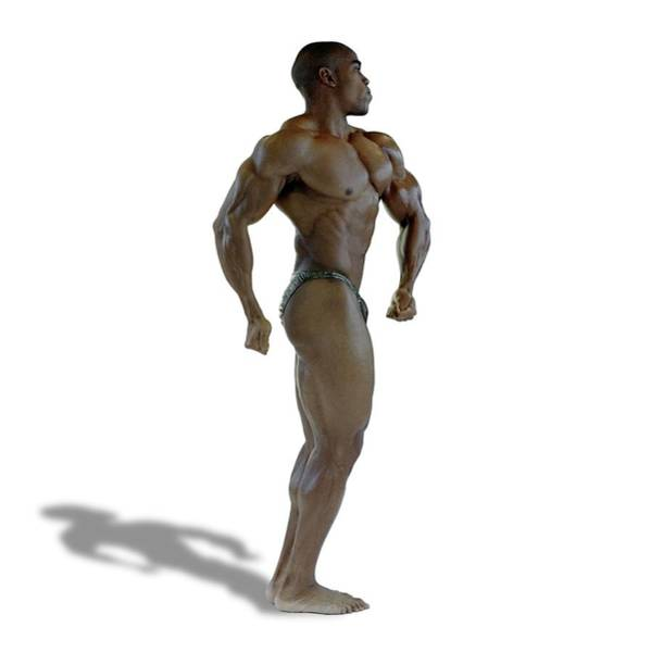 Male Body Builder Poster