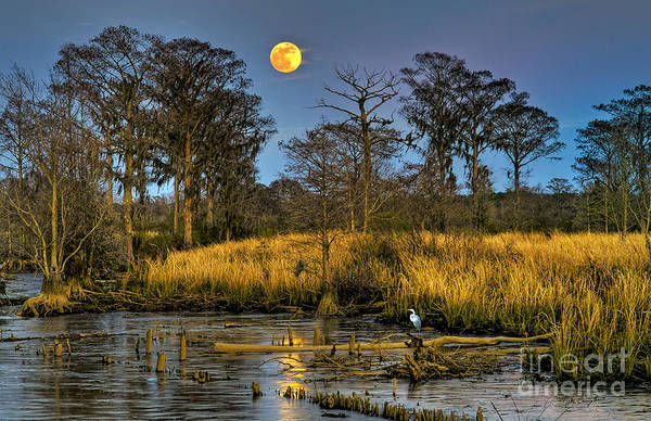 Pawleys Island Marsh Moon Poster