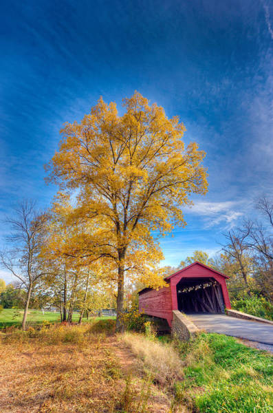 Maryland Covvered Bridge In Autumn Poster