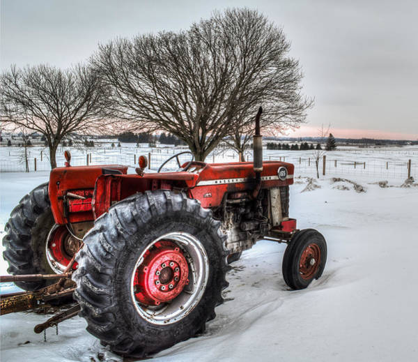 Poster featuring the photograph Massey Ferguson 165 by Garvin Hunter