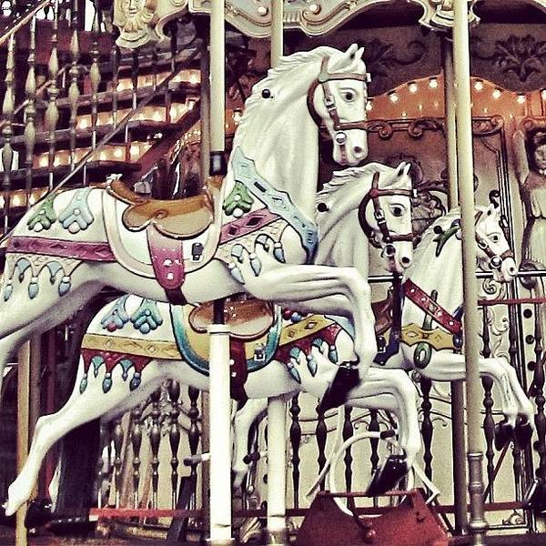 #mgmarts #horse #bestogram #instahub Poster