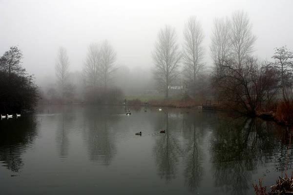 Misty Lake Reflections Poster