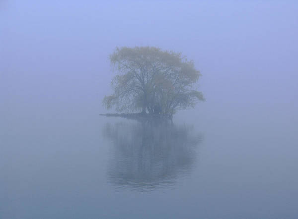 Misty Morning At Jamaica Pond Poster