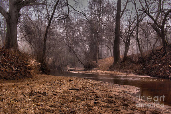 Misty Morning Creek Poster