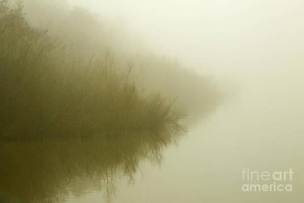Misty Morning Reflection. Poster