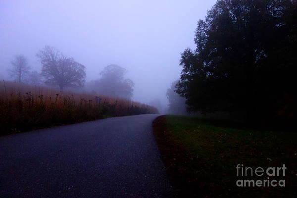 Moody Autumn Pathway Poster