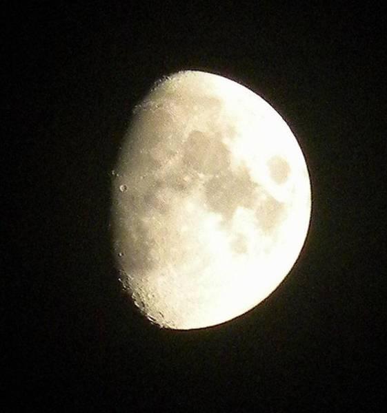 Moon Lit Night Poster