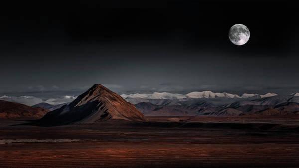 Moon Night Poster