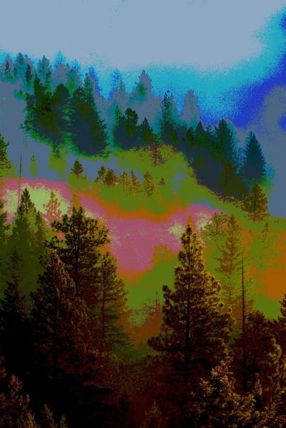 Morning Arrives In The Pacific Northwest Poster