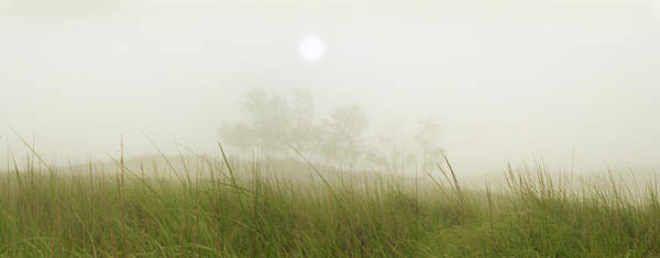 Morning Fog On The Dunes Poster