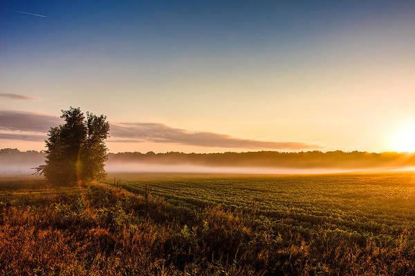 Morning Sun Over Farmland Poster