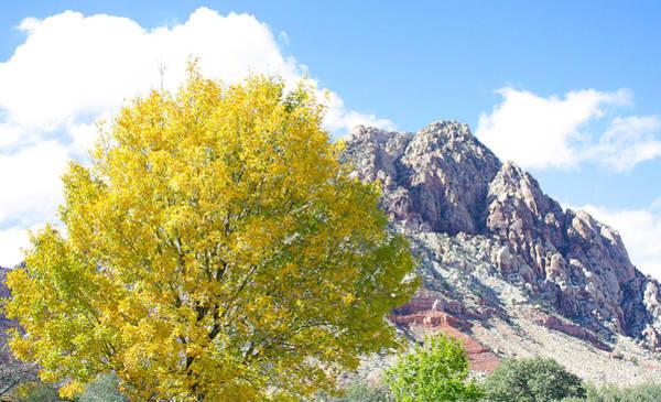 Mountain Fall Poster