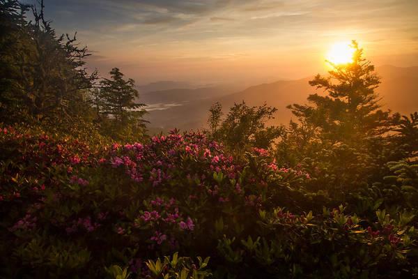 Mountain Morning Poster
