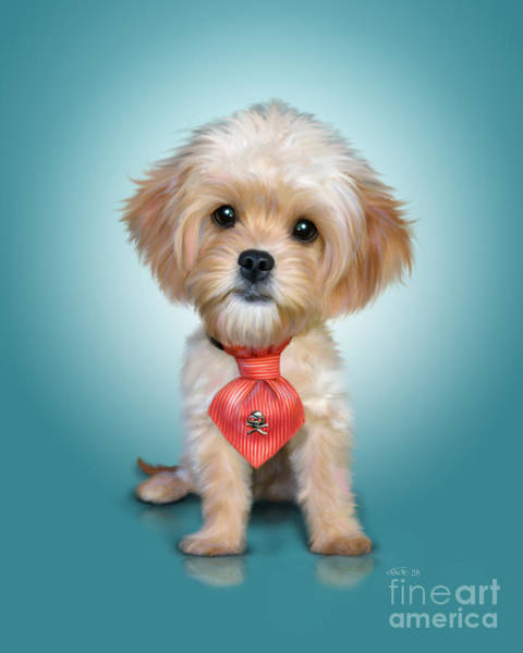 Mr. Toby Waffles The Cavapoo Poster