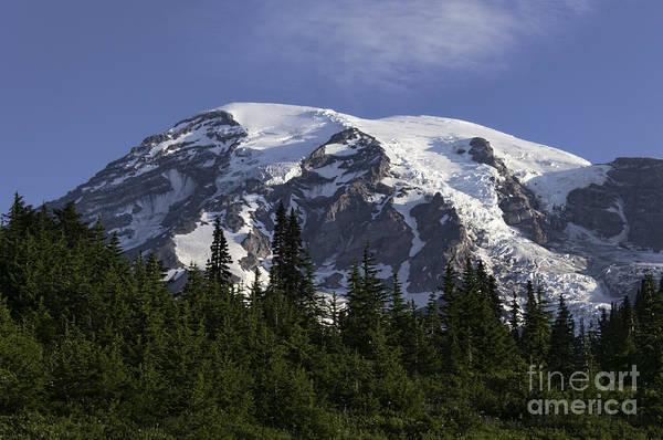 Mt Rainier Landscape Poster