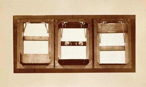 Muybridge Motion Study Shutters Poster