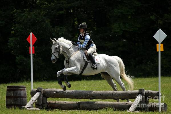Natural Eventers Poster