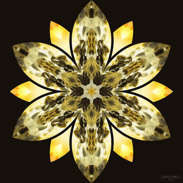 Nature's Mandala 57 Poster
