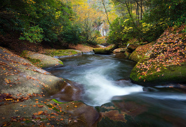 North Carolina Mountain River In Autumn Fall Foliage Poster